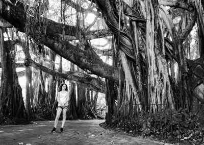 George under Banyan